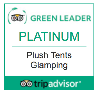 Green Leaders PLATINUM Plush Tents Glamping