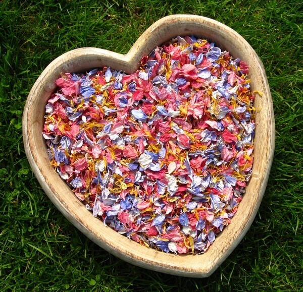 Biodegradable confetti dried wild flowers|Plush Tents glamping wedding