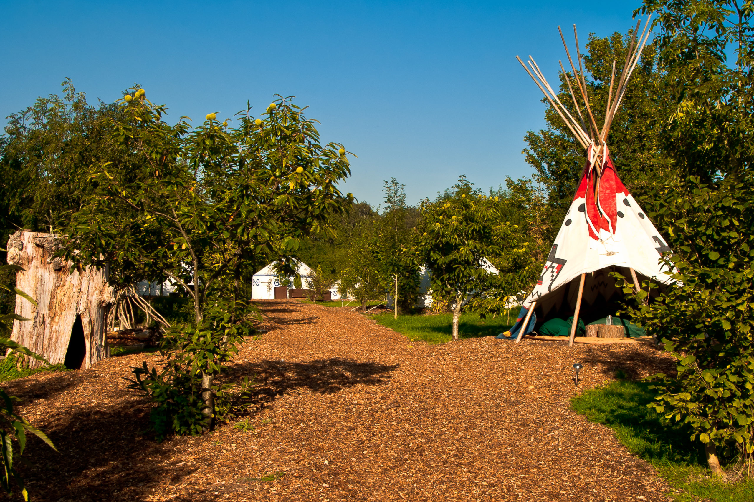 Teepee Plush Tents Glamping